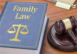 Pre-ordered ebooks,Family Law,Fifth Annual Family Law Interdisciplinary Intensive